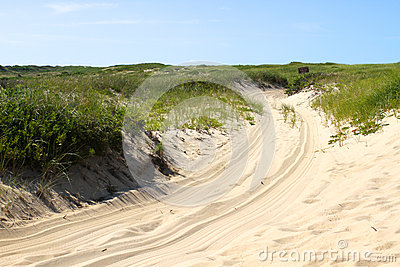 Path in Cape Cod Dunes