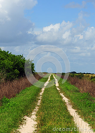 Path in countryside with nobody