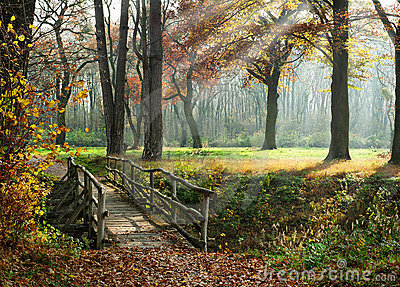 Path through enchanted autumn Park