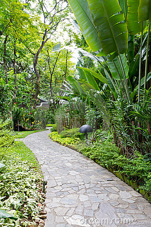 Path and garden