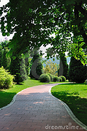 Path in garden 4913