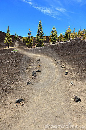 Path for hiking, Tenerife