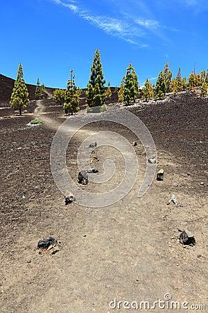 Path for hiking, Tenerife