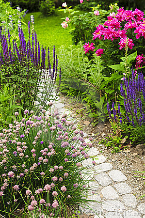 Free Path In Blooming Garden Royalty Free Stock Photo - 6191575