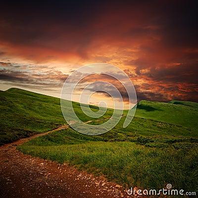 Path through a mystery mountain meadow to horizon