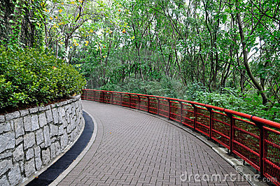Path in Park 2672