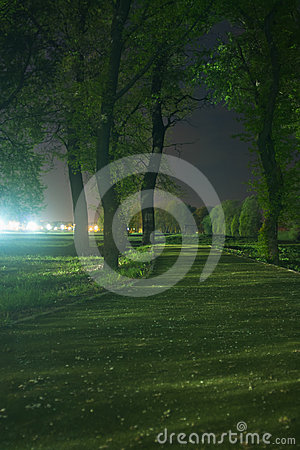 Path through park at night