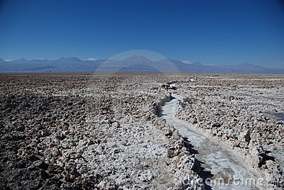 Path in a salt desert