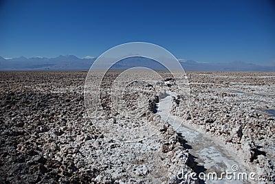Path in a salt desert