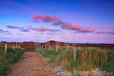 Path in the sand dunes at sunset