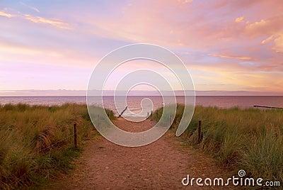 Path sea sunset