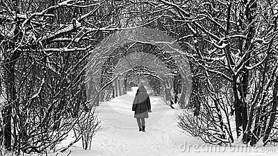 Path through the snow