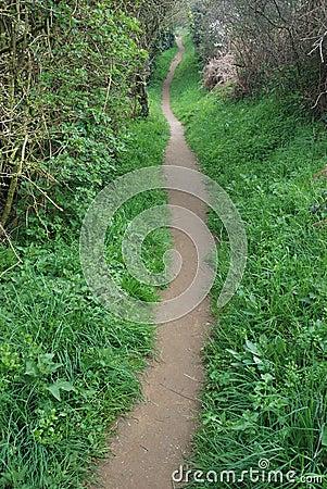 Path at spring