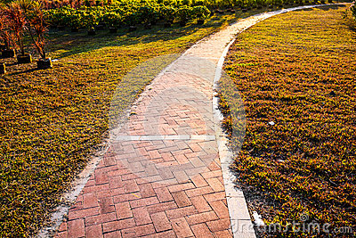 Path sunset garden landscape