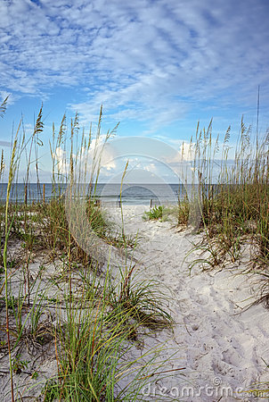 Free Path Through The Dunes To Calm Blue Ocean Royalty Free Stock Photography - 35498207