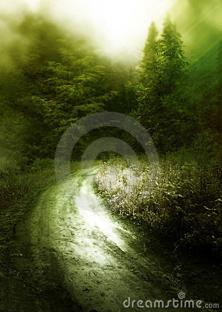 Free Path To A Forest Royalty Free Stock Photo - 24231605