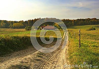 Path to farm