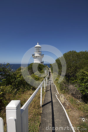 Free Path To Light House At Sugarloaf Point Stock Photography - 48817082