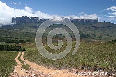 A path to Roraima