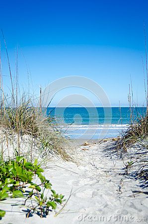 Free Path To The Beach Royalty Free Stock Images - 37903409