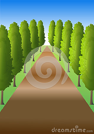 Path with trees