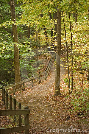 Free Path With Fence Royalty Free Stock Photo - 30295