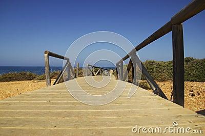 Pathaway на побережье