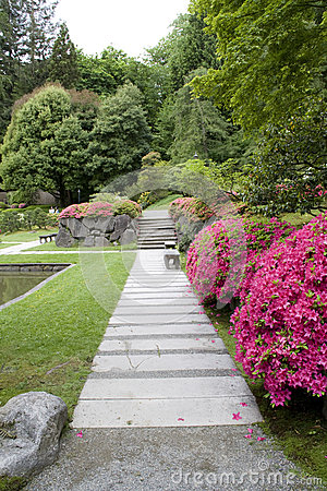 Paths and flowers in Japanese garden