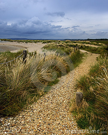 Free Pathway By Beach Royalty Free Stock Photo - 11888625