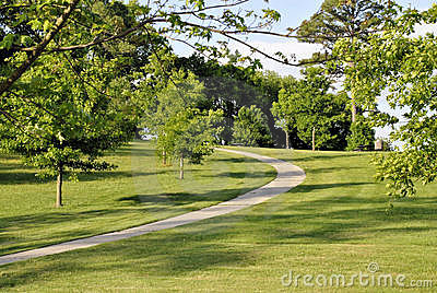 Pathway through park