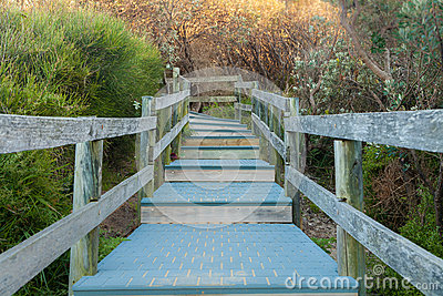 Pathway To The Beach and Ocean