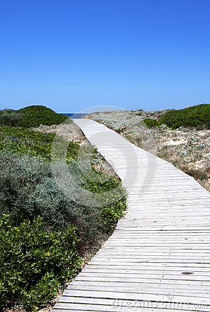 Pathway  to the sea