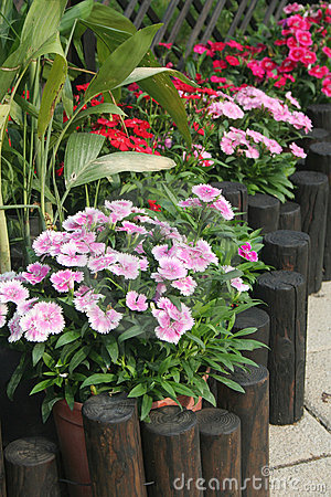 Patio Garden Stock Images - Image: 13049964