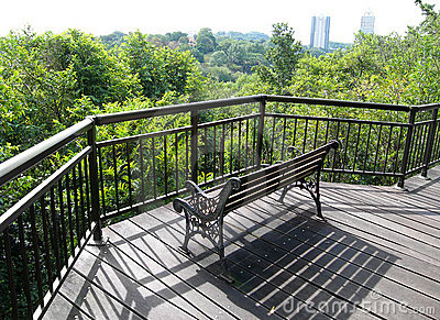 Patio, tree top boardwalk