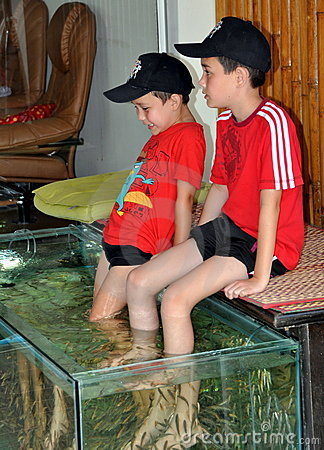 Free Patong, Thailand: Little Boys Getting Fish Massage Stock Photos - 18437003