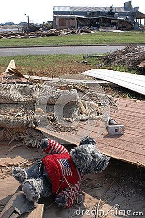 Patriotic Bear After Katrina