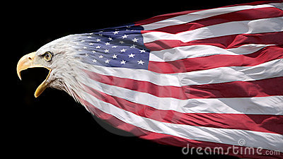 Patriotic eagle and flag