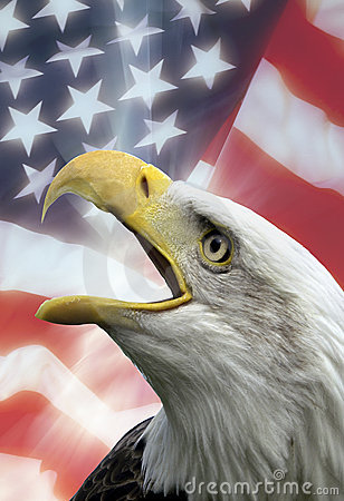 Free Patriotic Symbols - USA - Eagle Royalty Free Stock Photo - 14182315