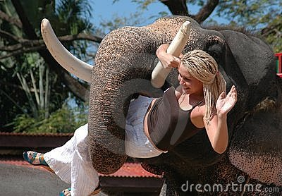 Pattaya, Thailand: Elephant Holding Woman Editorial Photography