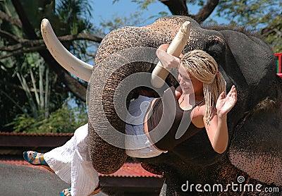 Pattaya, Thailand: Elephant Holding Woman Editorial Photography