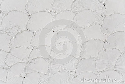 The pattern resembling fish-scale of wall