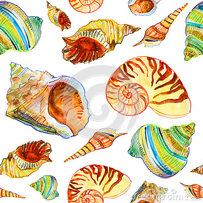 Free Pattern With Seashells Stock Images - 31246884