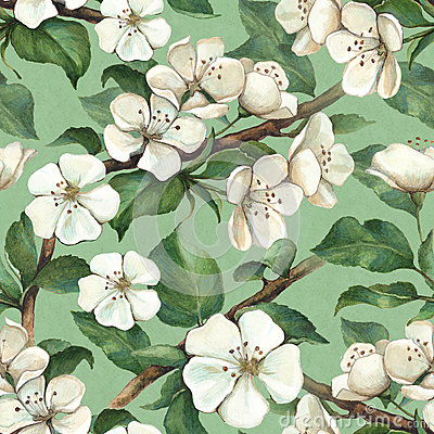Free Pattern With Watercolor Apple Flowers Royalty Free Stock Image - 38373066