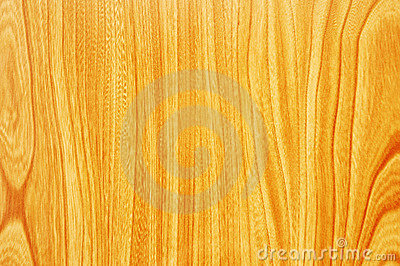 Pattern of wood surface - can