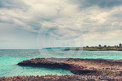 Paume et plage tropicale dans le paradis tropical. Été holyday en République Dominicaine, Seychelles, les Caraïbe, Philippines, Ba