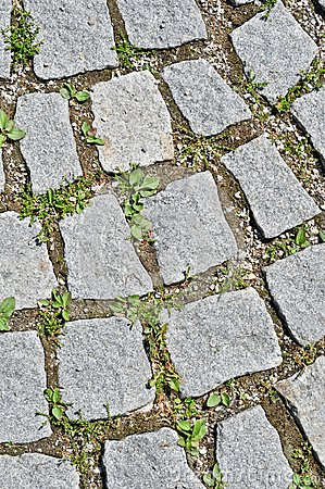 Pavement stone tile