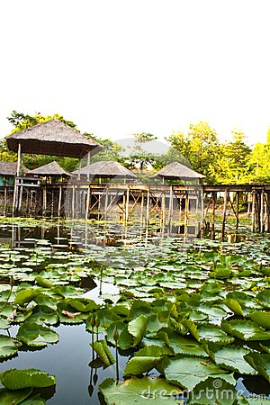 Pavilion and pool