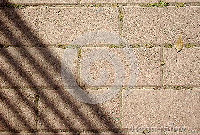 Paving with shadows and leaf