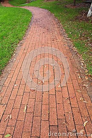 Paving slab in park