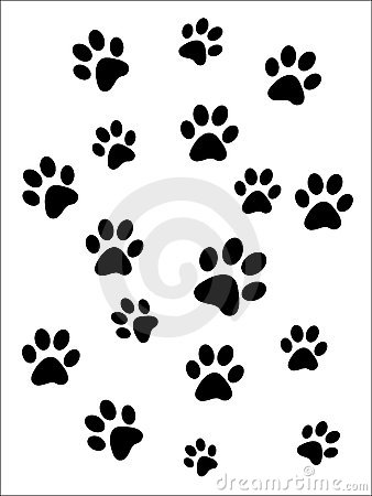 Free Paw Prints Stock Images - 7958534